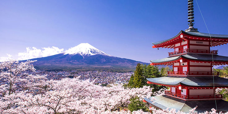 How to Experience Japan for Less
